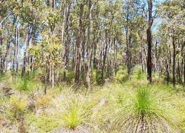 Bushfire Prone