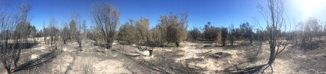 Harvey Waroona Fire
