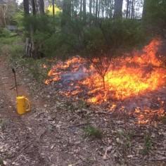 Bushfire Planning Western Australia