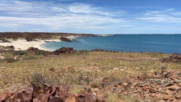 Bushfire Tourism